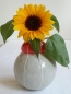 VIT bubble vase in red/yellow combo 6.5 x 6.25